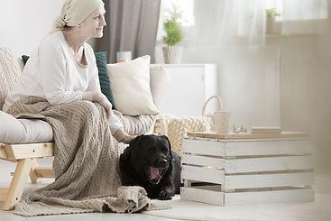 hospice dog.jpg