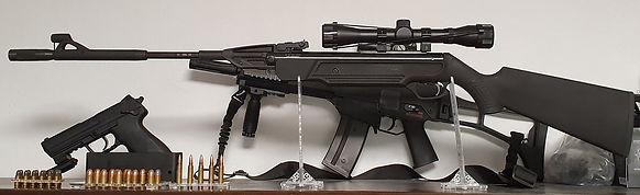 gun-laws-4704921_1920.jpg