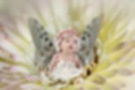 fairy-2057761_1920.jpg