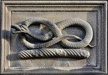 snake-3159050_1920.jpg
