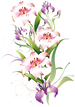 flower png h.png