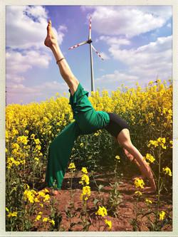 Heike Binder Altziebler_YogaKonfigurationen_IMG_1410
