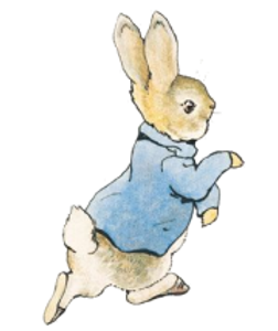 PeterRabbit.png