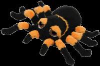 Safe Spider