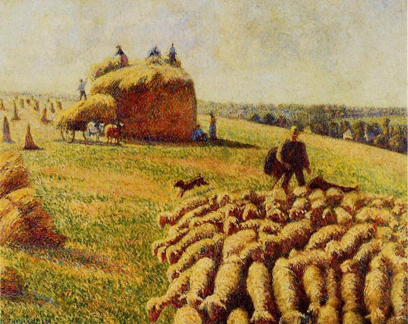 Camille Pissaro, Troupeau de moutons dans un champ après la récolte, 1889.