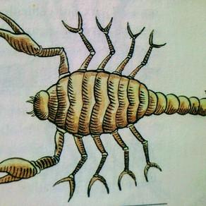 Le signe du Scorpion