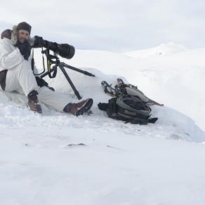 Vincent Munier, photographe
