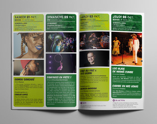 VDMM_brochure.jpg