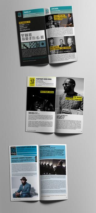 SDH-brochure3.jpg