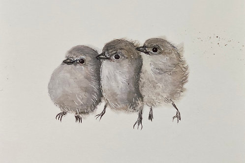 Three Little Dickie Birds