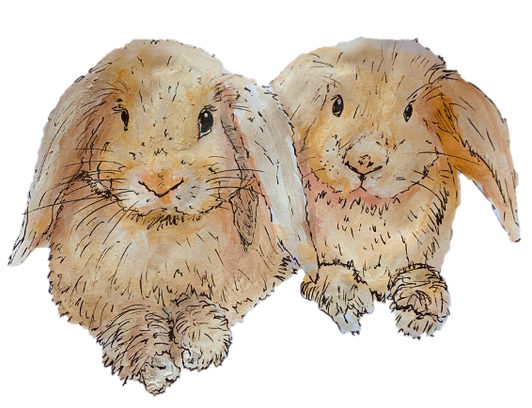 Golden Bunnies