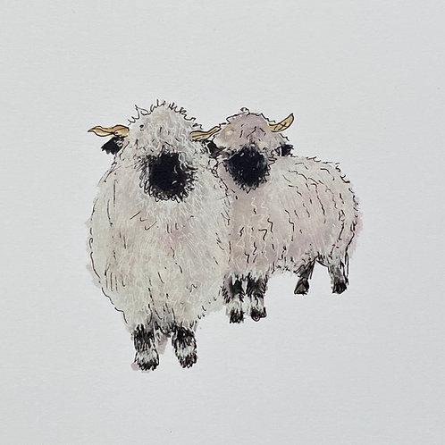 Love Ewe
