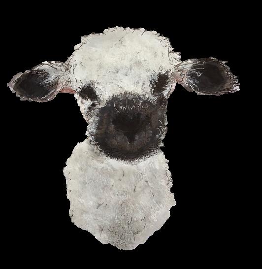 Baa-lamb