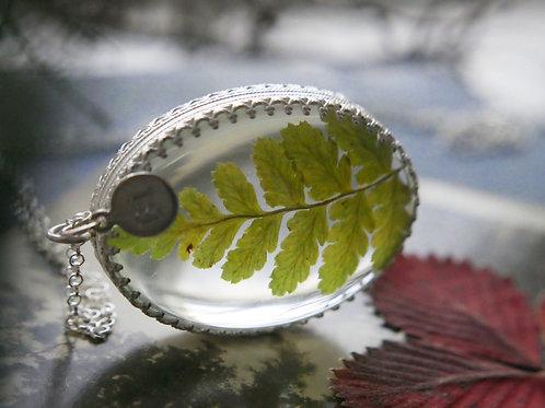Scottish pressed bracken sterling silver glass botanical locket