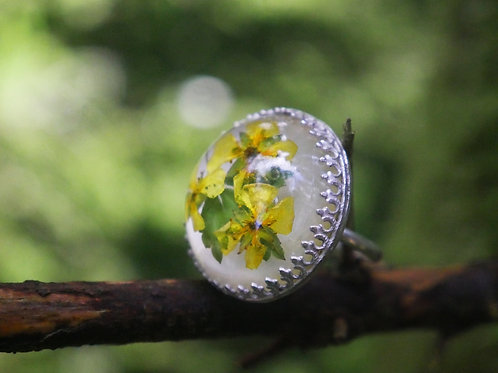 Cinquefoil sterling silver dome resin ring