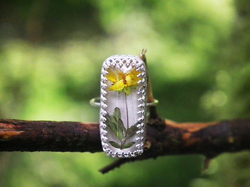Cinquefoil sterling silver resin ring