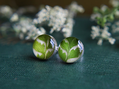 Pressed fern sterling silver stud earrings