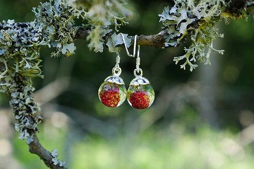 Wild strawberry sterling silver earrings