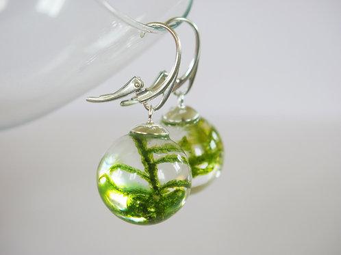 Moss 925 sterling silver resin sphere lever back earrings