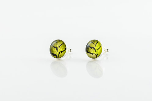 Pressed fern sterling silver stud earrings
