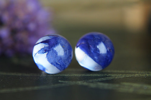 Scottish blue cornflower petal sterling silver resin stud earrings