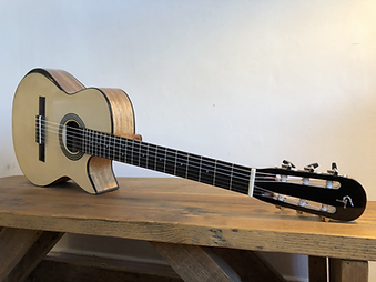 Parlor Nylon Guitar