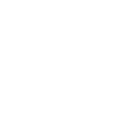 fabiana coll-6.png