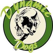 TAYOLA Dynamics Dog (Courcouronnes)