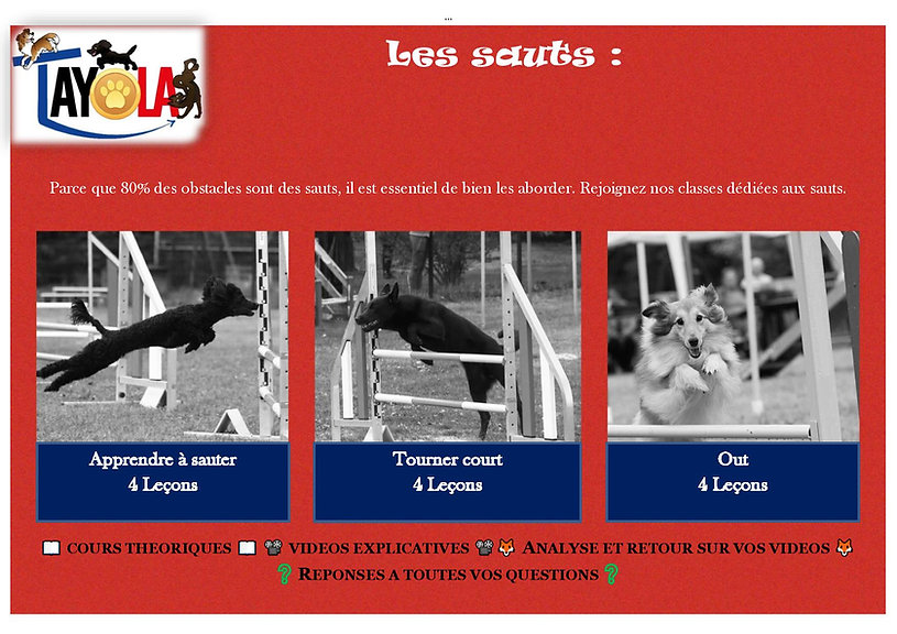 2020-04 Affiche sauts-page-001.jpg