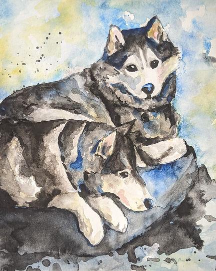 WatercolorHusky.jpg