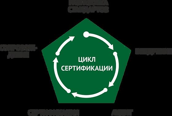 ДВК Стандарт цикл сертификации.png
