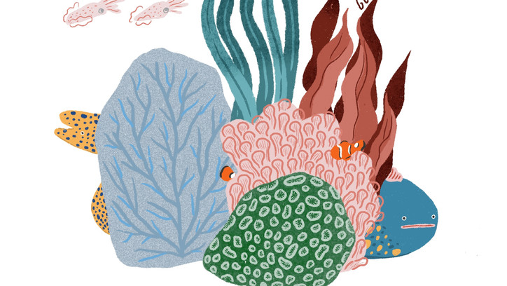 Good Gurl Jade-小丑魚和海葵