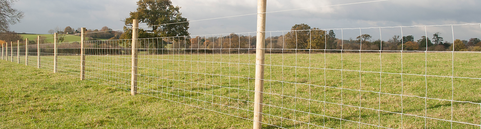 stock fence 2.png
