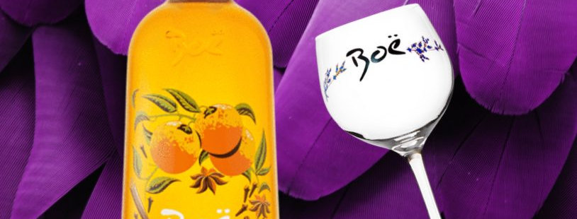 Boe Spiced Orange Gin & Glass Giftset