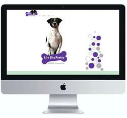 web site Desing