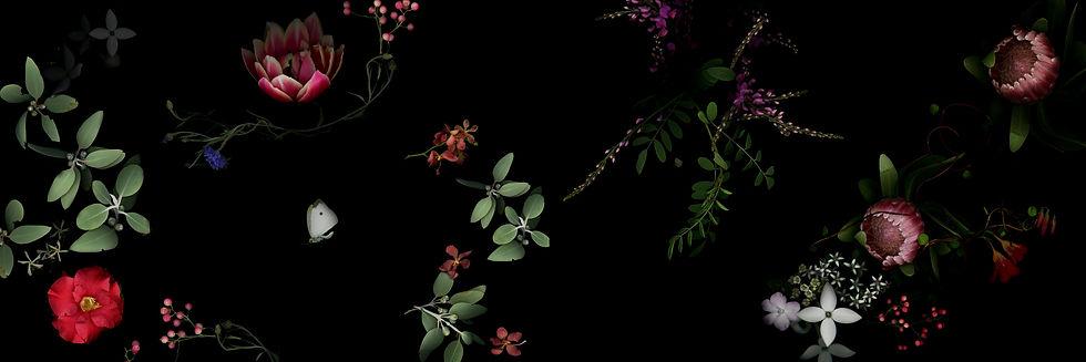bannerwebsite_edited.jpg