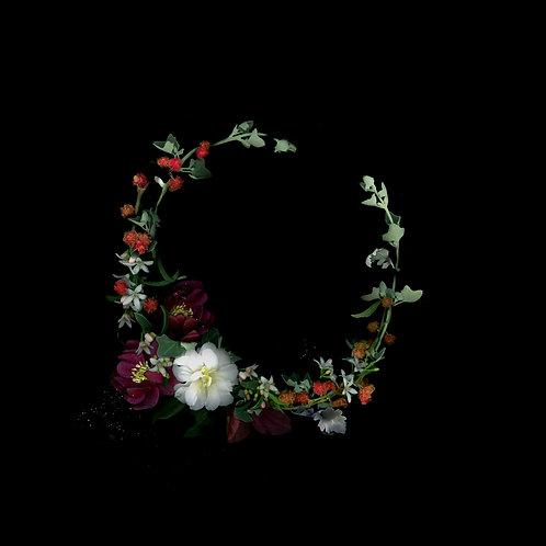 Possibilian wreath, 2020
