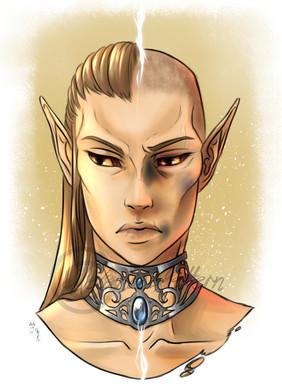 Ainea, an Altmer and former slave of my slavehunters
