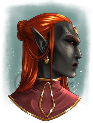 Norven Amaven Dres, member of my slavehunters' guild in ESO