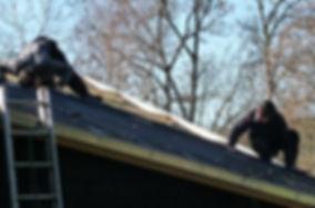 Goutières en zinc, cheneaux, abergement de cheminée