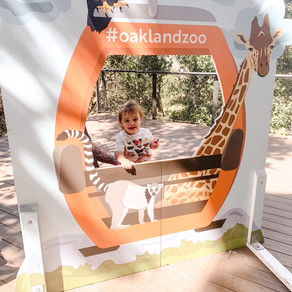 Oakland Zoo - Bella's first trip to the zoo!