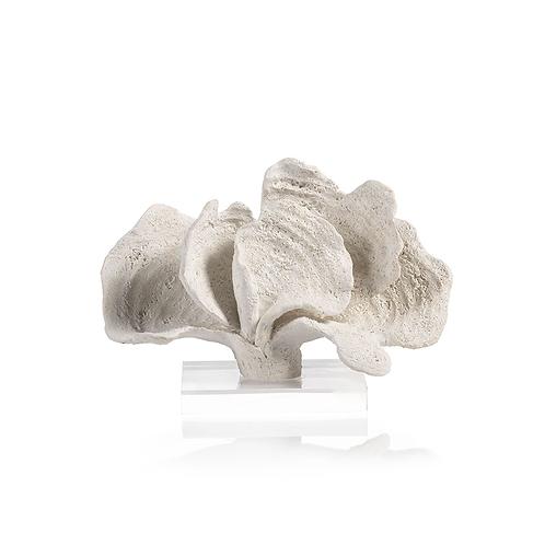White Coron Coral on Acrylic Base