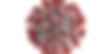 Screen Shot 2020-03-22 at 6.59.07 PM.png