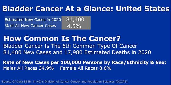BladdercancerStatsUS.jpg