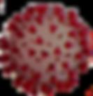 COVID-19-Response-647x381px_edited_edite
