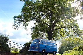 campervan vw hire