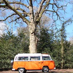 VW Campervan.jpg
