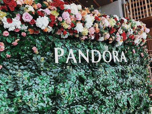 Pandora Wall 03:19.jpeg