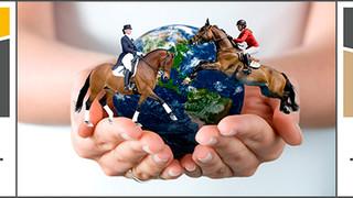 Неделя «Открытый мир» и ярмарка лошадей