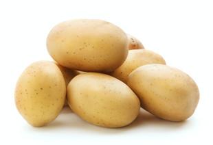 Cebola e batata ficam mais baratas em agosto nas principais Ceasas